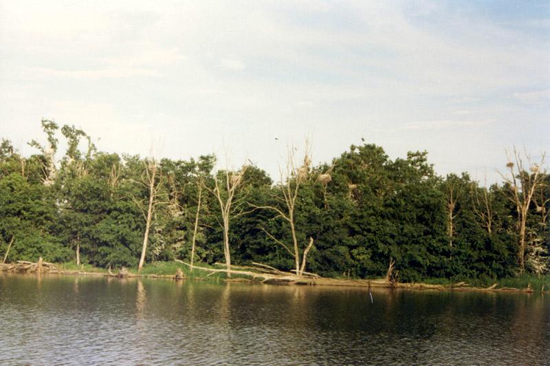 Поднятие уровня воды наЧебоксарской ГЭС